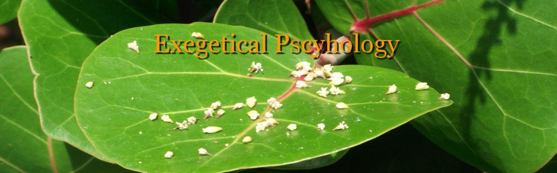 Exegetical Psychology